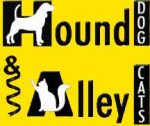 Hound Dog and Alley Cats