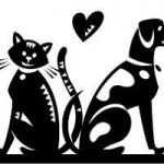 Precious Pets House and Pet Sitting Service – Garden Route