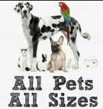 All Pets All Sizes